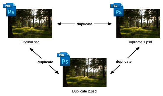 The 'duplicate' relationship