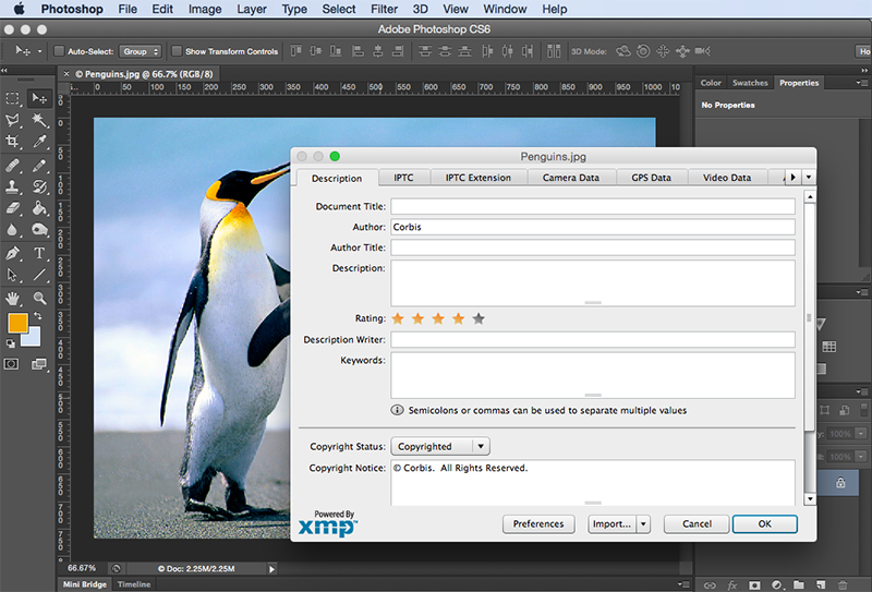 Adding additional metadata in Photoshop