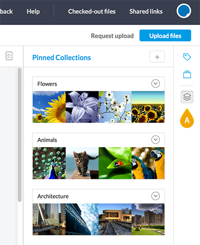The Pinned Collections icon in Elvis 6.8 or lower