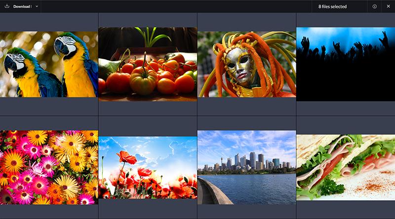 Viewing 8 images in fullscreen mode