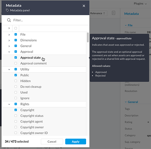 A description of a metadata field