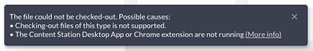 File check-out error message