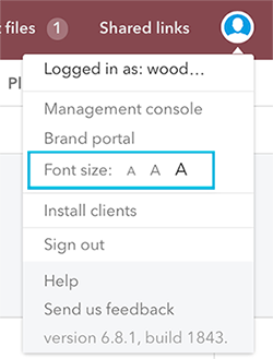 Font size options in the Avatar menu