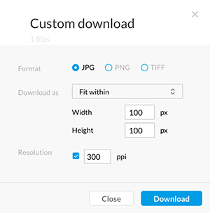 The Custom Download window