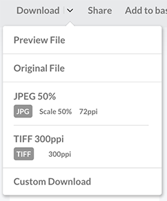 Download presets