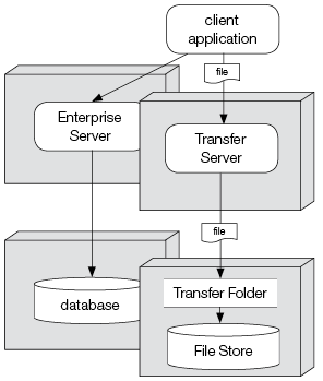 Enterprise Server setup with a separate File Transfer folder