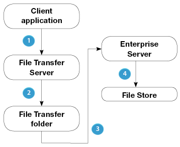 Enteprise Server transfer process simplified