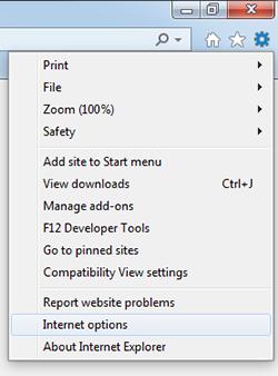 The Internet Explorer 11 menu