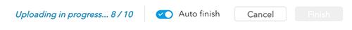 The Auto Finish button