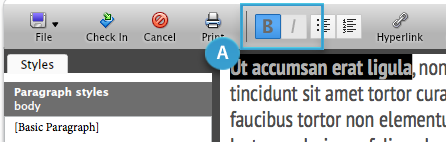 Toolbar buttons for applying bold or italic formatting