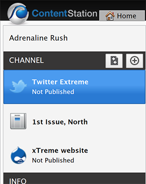 The Twitter Publication Channel selected in the Channel pane