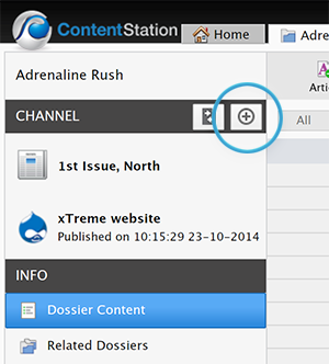 The + Channel button in the Publication Channel pane