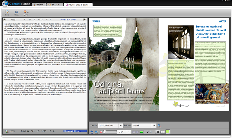 Previewing an article that is placed on a layout