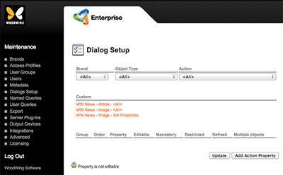 The Dialog Setup page of Enterprise Server