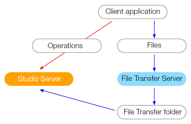 The file transfer workflow overview