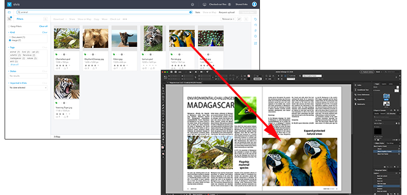Dragging images from Elvis to InDesign
