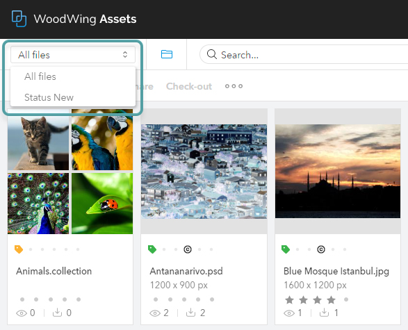 The Search Preset list in Assets 6.64 and lower