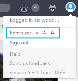 The font size options in the Avatar menu