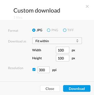 The Custom Download window