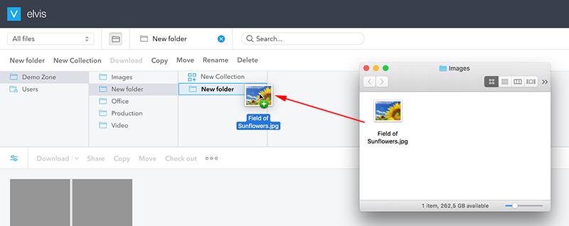 Adding an image to a folder