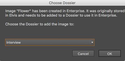 The Choose Dossier window