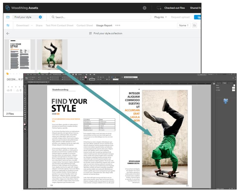 Placing a file from Assets into InDesign