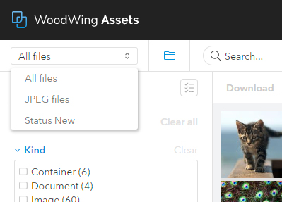 Choosing a Search Preset  in Assets.