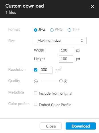 Custom download options.