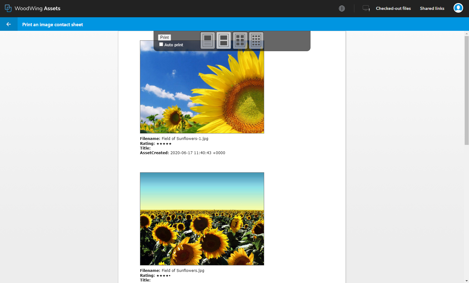 An action plug-in displayed as a fullscreen window.