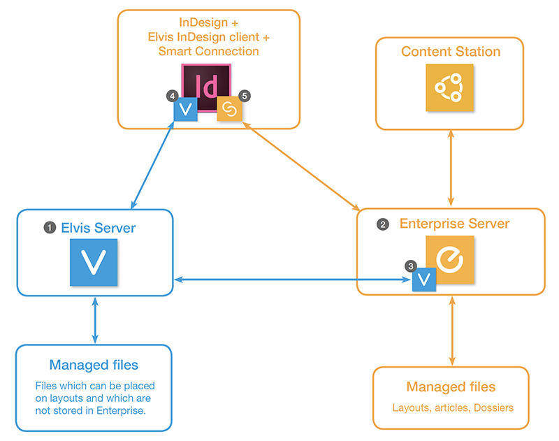 The Elvis - Enterprise architecture